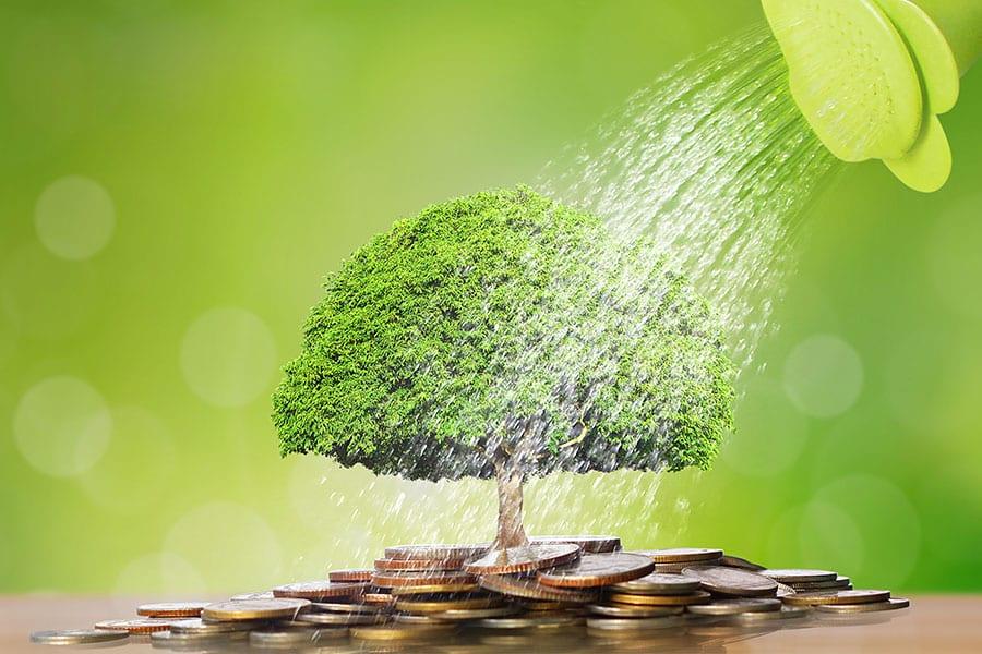 7 Steps to Become a Cash Flow Management Ninja